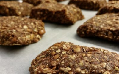 Best of Riegel: Chocolate Chip Clif bars