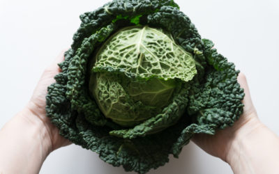 Die grüne Lüge, die uns alle angeht – Nachhaltigkeit und Ernährung